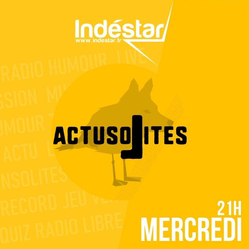 INDESTAR - Actusolites